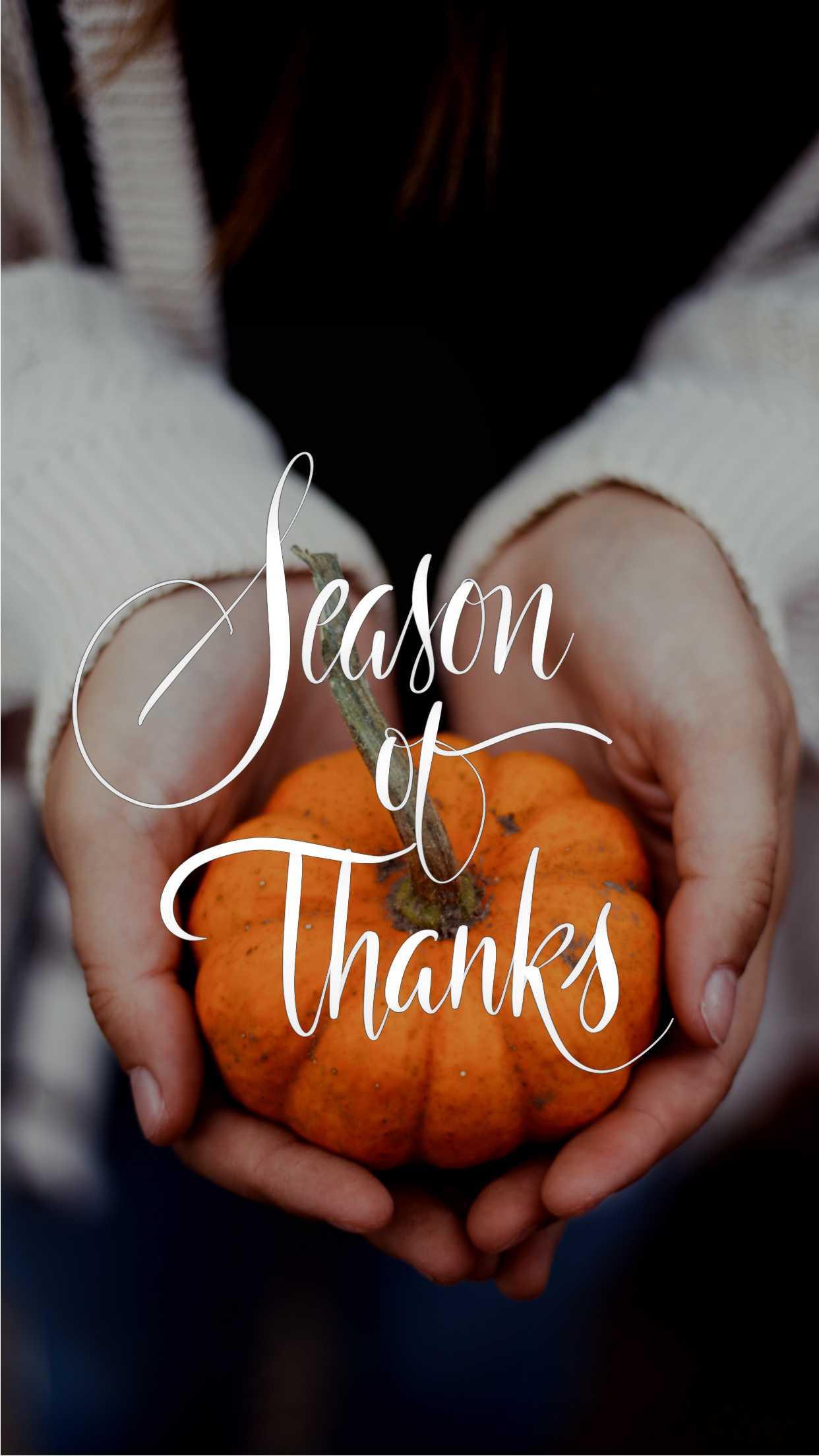 Season of Thanks Wallpaper